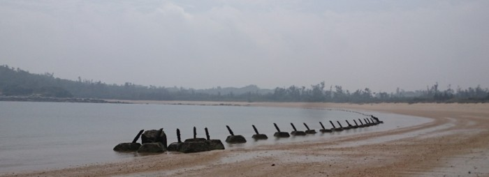 Figure 3: Anti-landing piles along the beach of Kinman island (© Ling-I Chu).